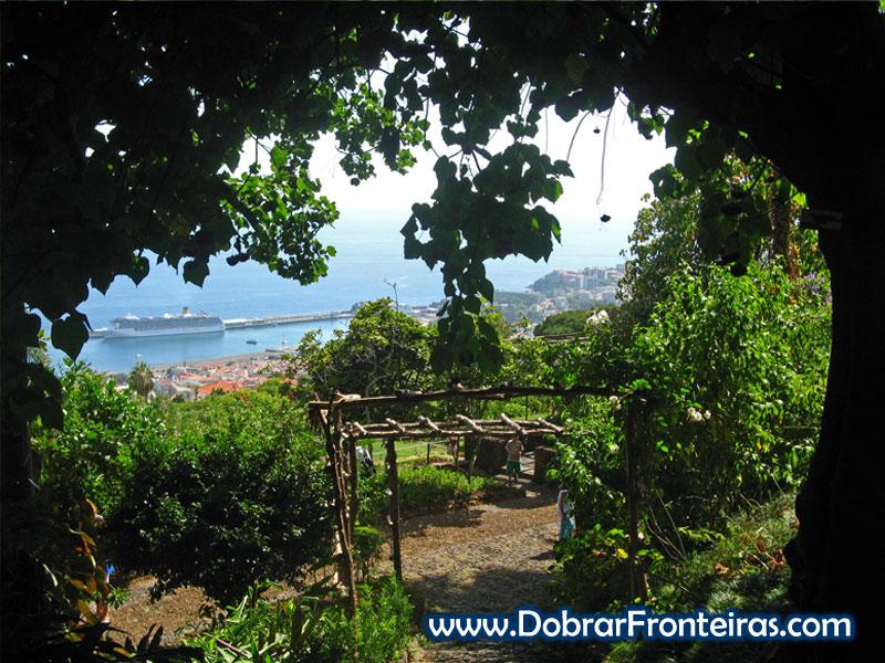 Navio de cruzeiro visto do jardim botânico do Funchal