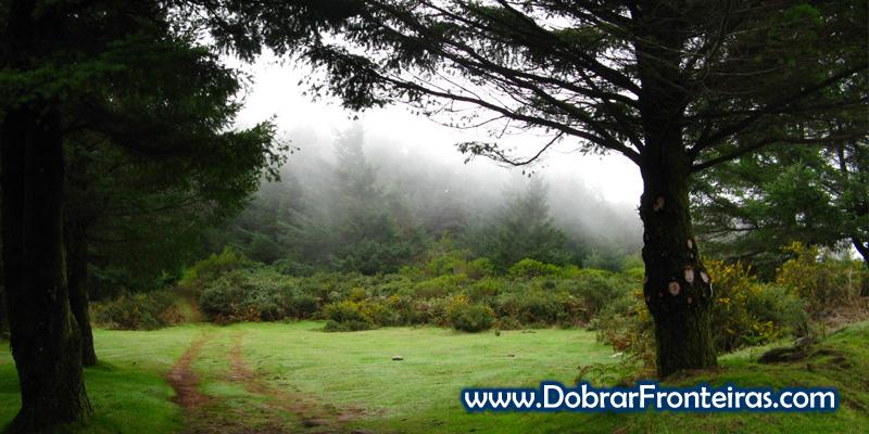 A paisagem verde do Poiso na Ilha da Madeira