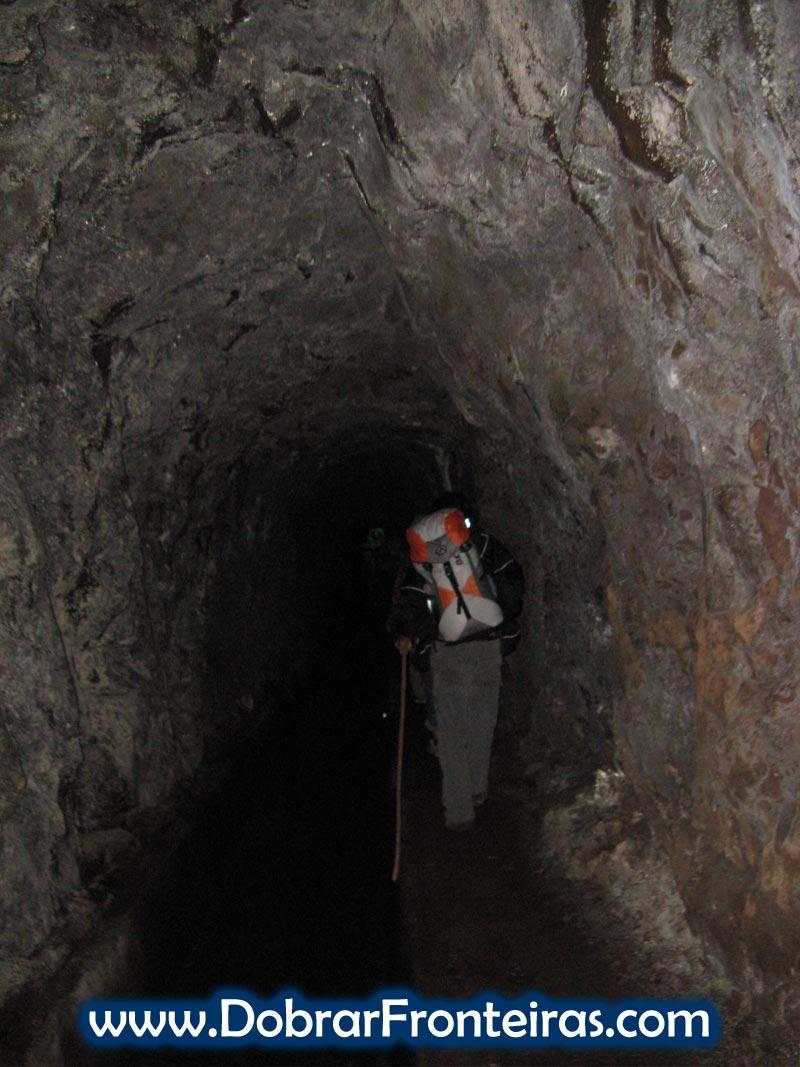 tunel-levada-madeira