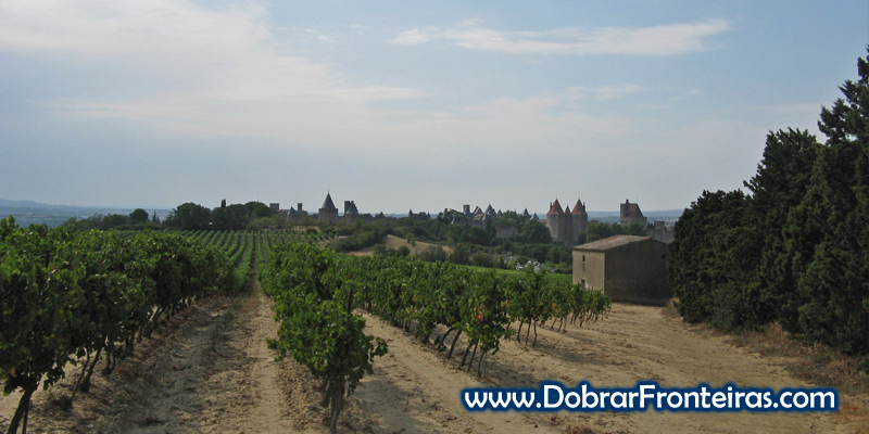 Linda vista das muralhas de Carcassone desde as vinhas que rodeiam a cidade