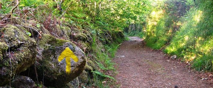 As setas amarelas indicam o caminho