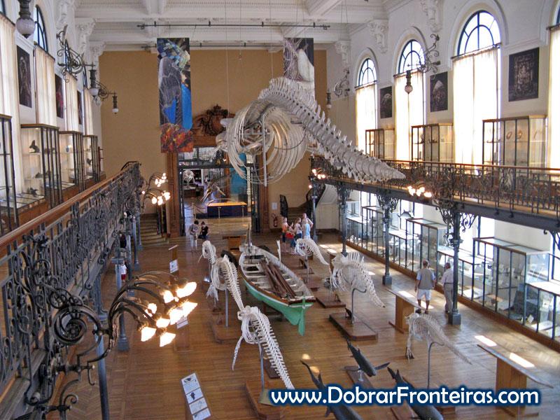 sala museu oceanografico monaco