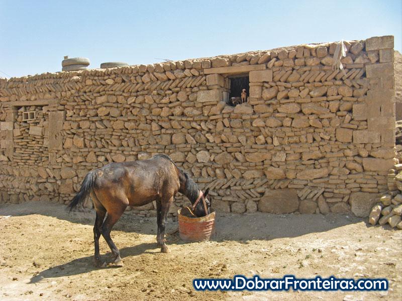 Cavalo a comer junto a casa tradicional