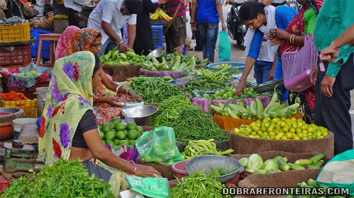 Colorido mercado de vegetais em Jaipur, Rajastão