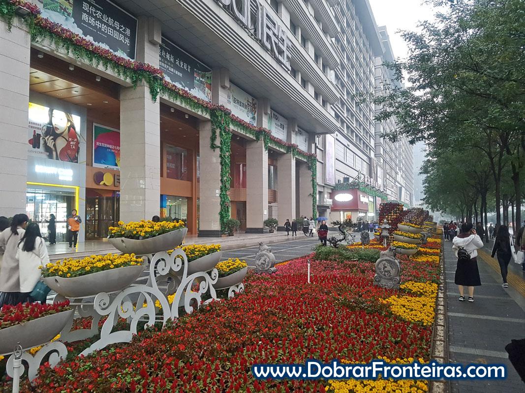Canteiro com flores amarelas e vermelhas em rua de Xi'an, China